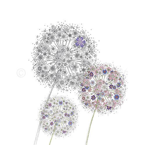 6 x Just Alliums [133]