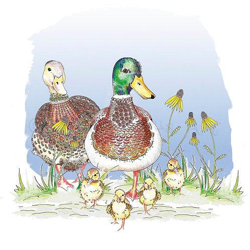 Duck Family [234]