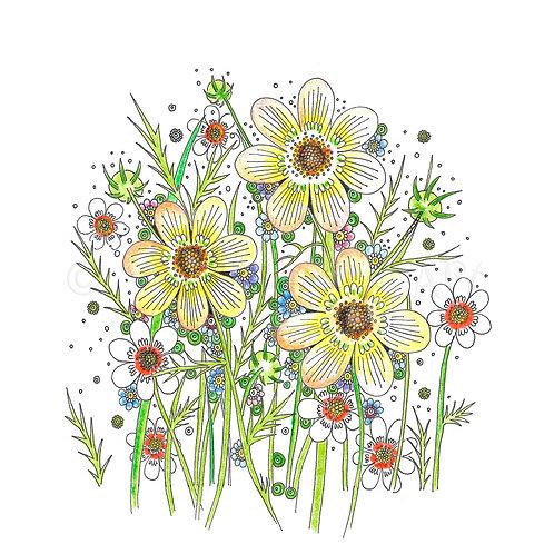 Spring Wild Flowers [385]