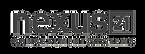 Nexus-21-logo-smaller.png