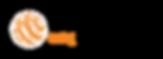 Ambassador-Logo-Primary_Black-1.png