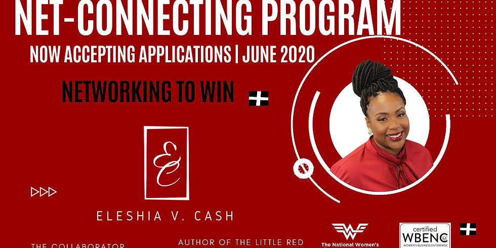 The Net Connecting Program