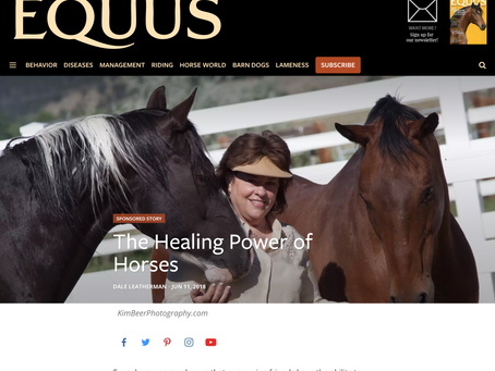 The Healing Power of Horses