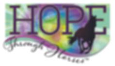 HTH Logo _2x-100.jpg