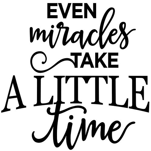 EVEN MIRACLES TAKE A LITTLE TIME   12X12