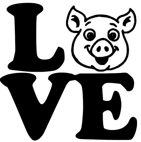LOVE WITH PIG  12X12