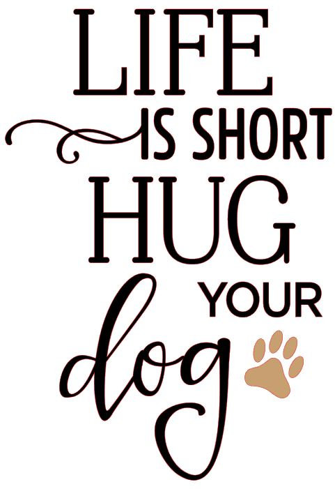 copy of LIFE IS SHORT HUG YOUR DOG 10 X 14 AT HOME KIT