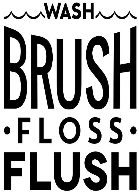 WASH BRUSH FLOSS FLUSH 12 X 14