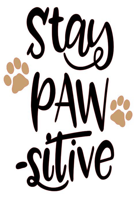 STAY PAW-SITIVE  12 X 12