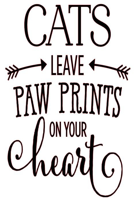 CATS LEAVE PAW PRINTS ON YOUR HEART  12 X 18 AT HOME KIT