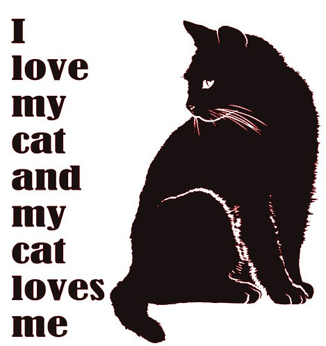 I LOVE MY CAT AND MY CAT LOVES ME    12 X 12