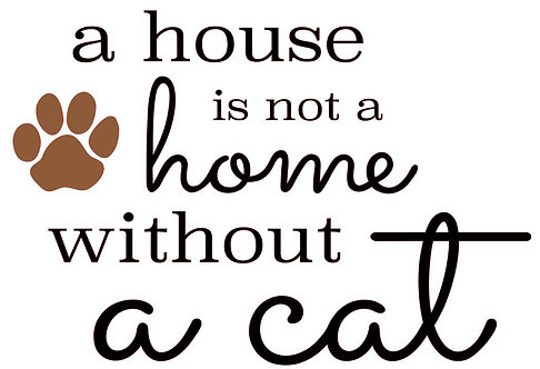 A HOUSE IS NOT A HOME WHITH OUT A CAT   12 X 12