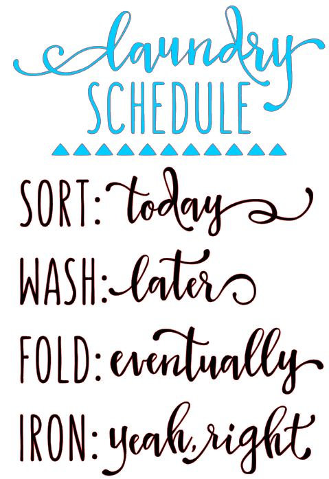 LAUNDRY SCHEDULE  IRON: YEAH RIGHT 12 X 16