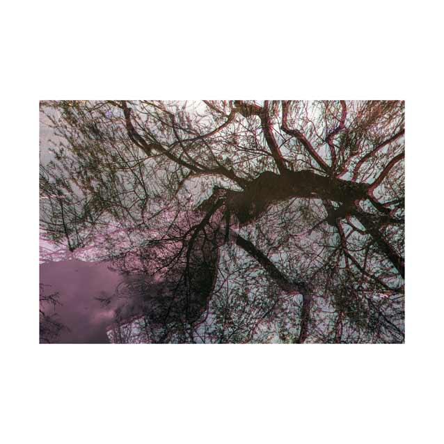 Giverny-Monet