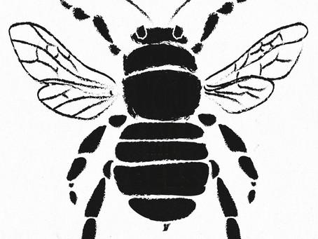 Celebrating Bees