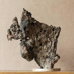 scholar's-rock1