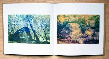 Page example of Petrified Creatures of Fontainebleau Forest