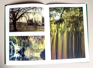 Folly Pond page examples
