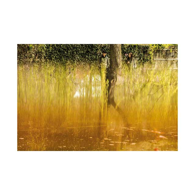 Monet-Weeping-Willow