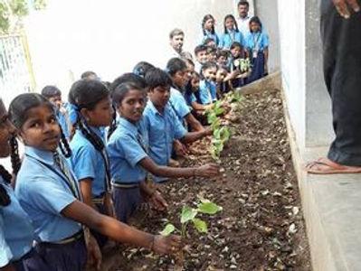 Anisha Kitchen Garden Project.jpeg