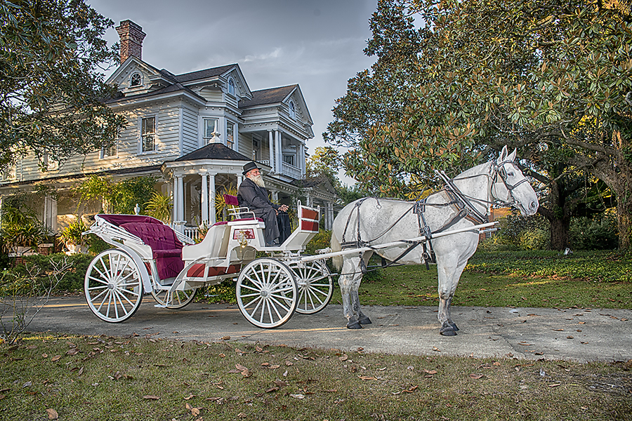 All Occasions Carriage Company (2)