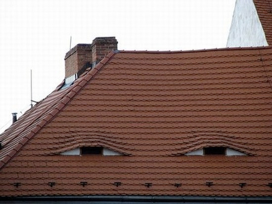 """""""How would you describe your roof?"""" """"Well, it's pretty high."""""""