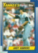 Topps Andy Hawkins