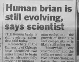 Good for Brian, still evolving after being upgraded to human.