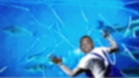 FishtankCrack.jpg