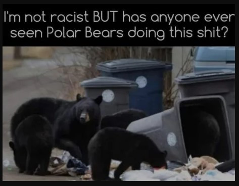 No. But I've never seen a polar bear rap, dance or dunk, either. They're just uninteresting.