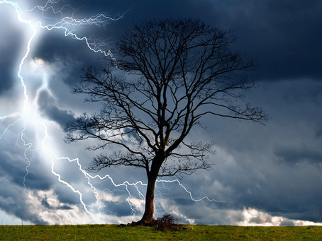 To develop a relationship, you must be able to dance with the thorns, storms, rain and all the errat