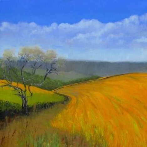 Barley at Silpho, limited edition print