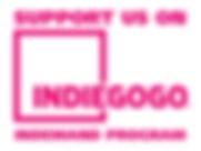 Indiegogo_logo-kopie100.png
