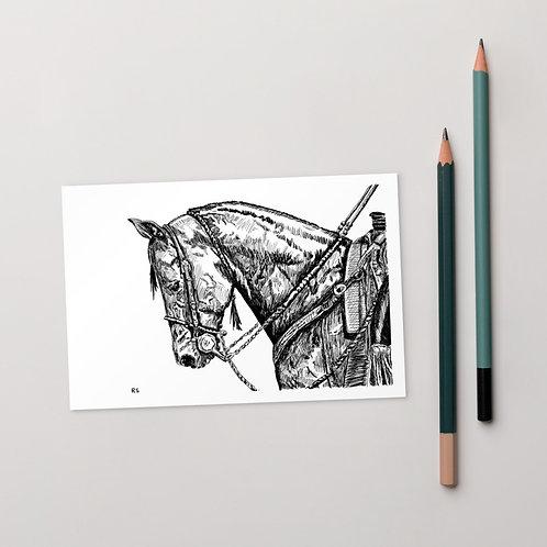 California Vaquero Bridle Horse Standard Postcard