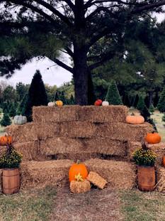 fall photo setup.JPG