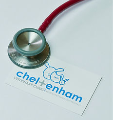 Stethoscope & Business Card
