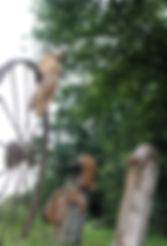 Maruen-amorphes-veillées-Redon-2020.jpg
