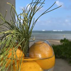 C Beach – Domaine de Bel Ombre