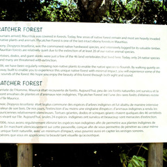 Passerelle à l'entrée de la forêt endémique.