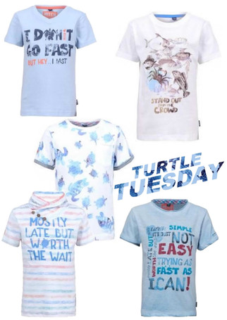 Turtle Tuesday