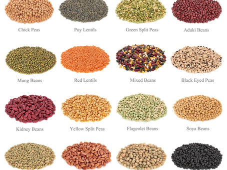 Nutritional Value of Dry Beans