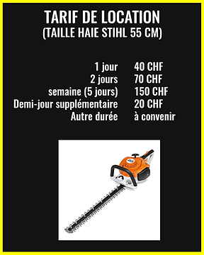 taille haie stihl 55cm.png