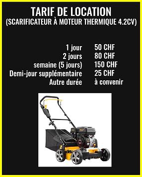 Scarificateur à moteur thermique 4.2CV.p