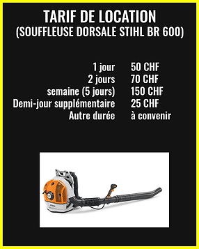 Souffleuse Dorsale Stihl BR 600.png