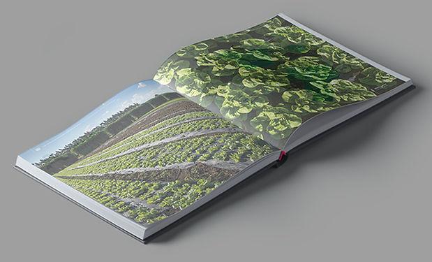 Fotos Livro Retratos do Agro 04.jpg