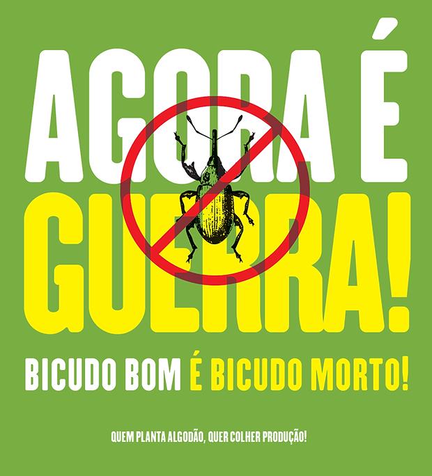 abrapa_bicudo_12.png