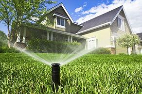 LawnWateringArticle-1024x682.jpg