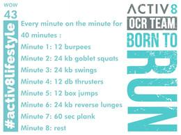 WOW 43 OCR, Trail running workout