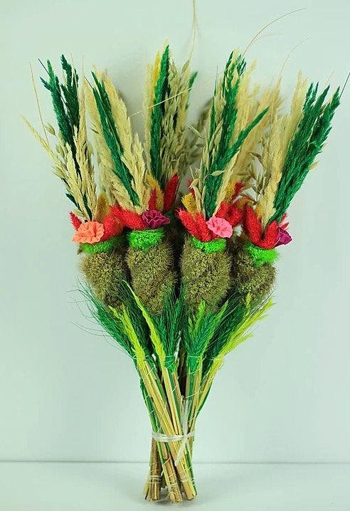 Palmes (45 cm) réf. 10