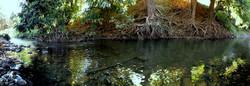 Bec River 2